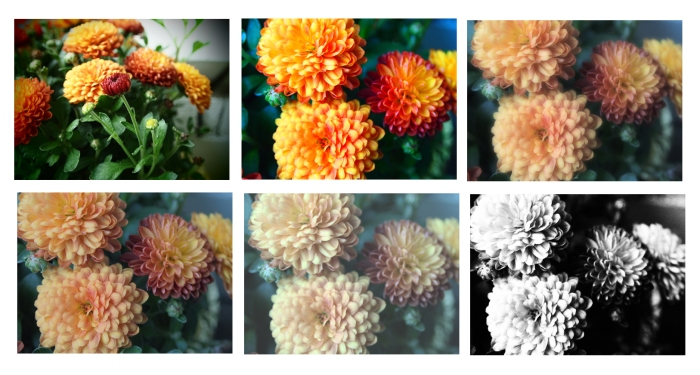 Examples of the Art Filters: (top row l. to r.) Pin Hole, Pop Art, Soft Focus; (bottom row l. to r.) Light Tone & Color, Pale Color, Grainy. Photos by Diane Berkenfeld.
