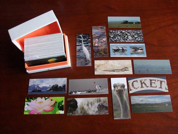 minicards photo